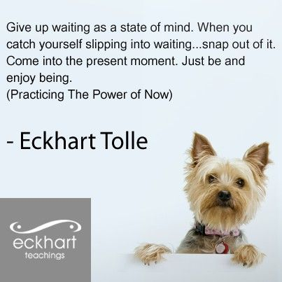 the power of now by eckhart tolle epub